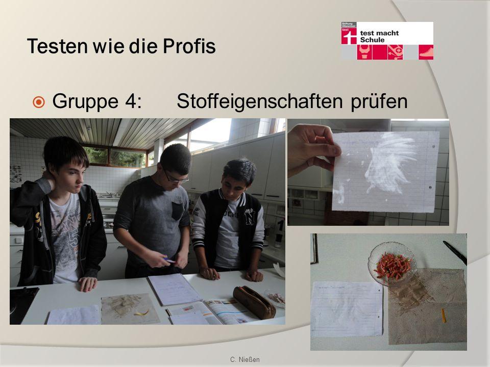 Testen wie die Profis Gruppe 4:Stoffeigenschaften prüfen C. Nießen