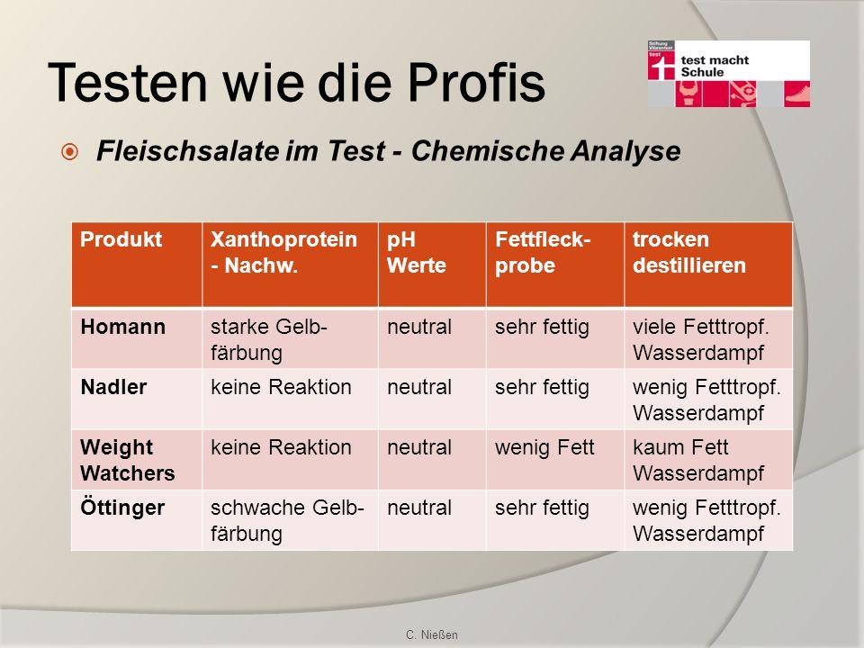 Testen wie die Profis Fleischsalate im Test - Chemische Analyse ProduktXanthoprotein - Nachw. pH Werte Fettfleck- probe trocken destillieren Homannsta