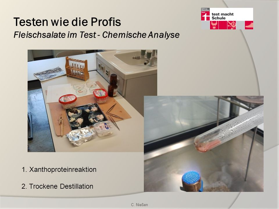 Testen wie die Profis Fleischsalate im Test - Chemische Analyse 1. Xanthoproteinreaktion 2. Trockene Destillation C. Nießen
