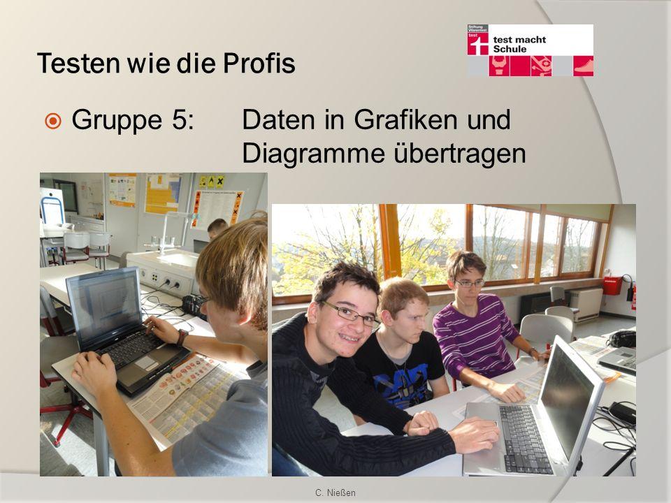 Testen wie die Profis Gruppe 5:Daten in Grafiken und Diagramme übertragen C. Nießen
