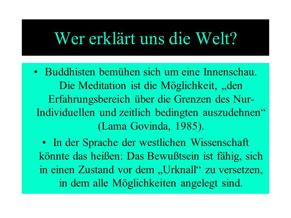 Wer erklärt uns die Welt? Buddhisten bemühen sich um eine Innenschau. Die Meditation ist die Möglichkeit, den Erfahrungsbereich über die Grenzen des N