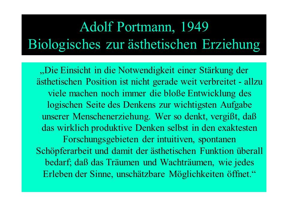 Adolf Portmann, 1949 Biologisches zur ästhetischen Erziehung Die Einsicht in die Notwendigkeit einer Stärkung der ästhetischen Position ist nicht gera