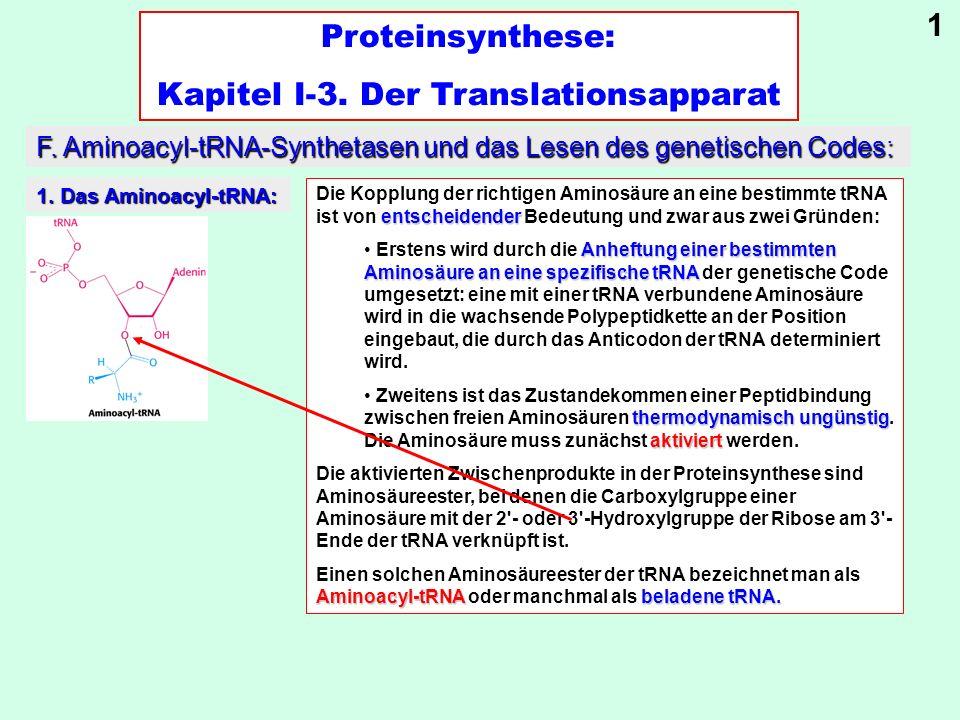 Proteinsynthese: Kapitel I-3. Der Translationsapparat F. Aminoacyl-tRNA-Synthetasen und das Lesen des genetischen Codes: entscheidender Die Kopplung d