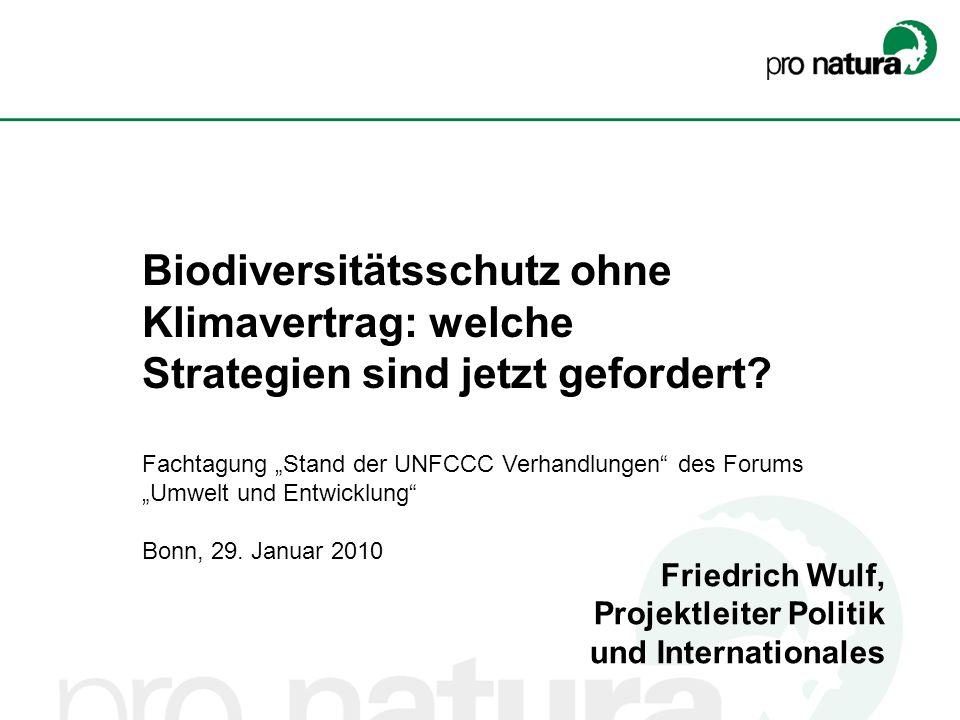 Friedrich Wulf, Projektleiter Politik und Internationales Biodiversitätsschutz ohne Klimavertrag: welche Strategien sind jetzt gefordert? Fachtagung S