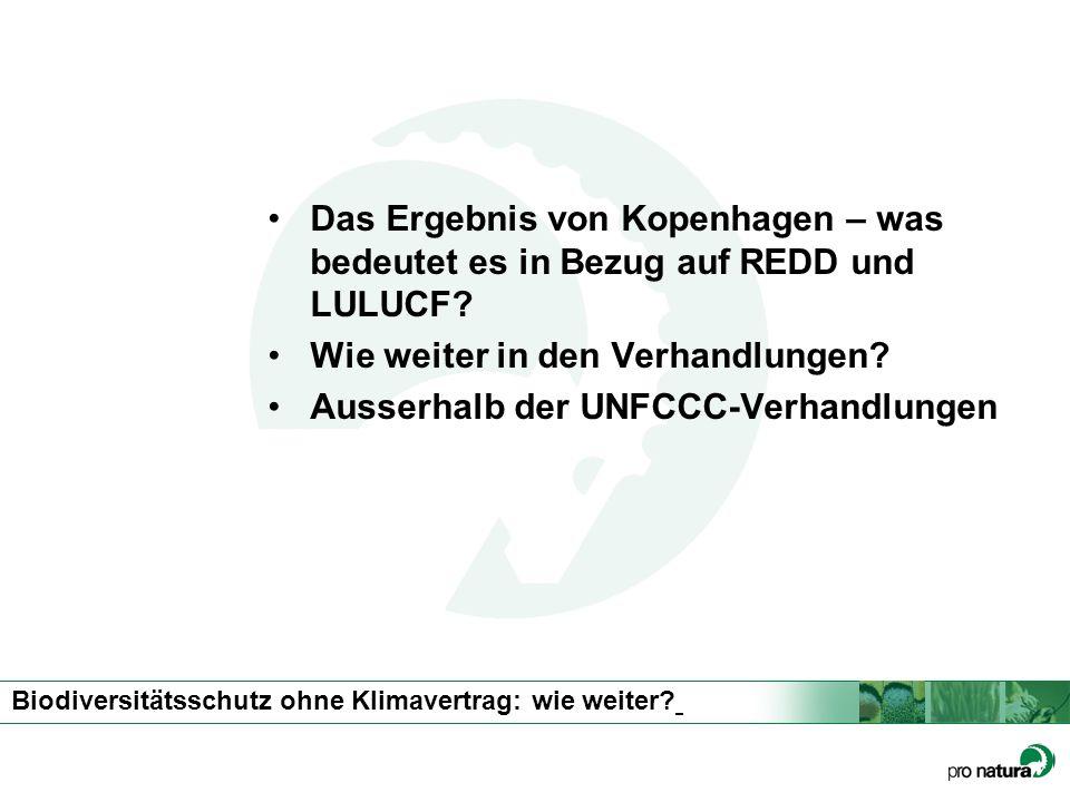 Biodiversitätsschutz ohne Klimavertrag: wie weiter? Das Ergebnis von Kopenhagen – was bedeutet es in Bezug auf REDD und LULUCF? Wie weiter in den Verh