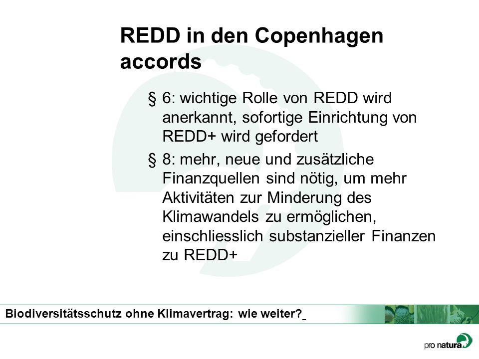 Biodiversitätsschutz ohne Klimavertrag: wie weiter? REDD in den Copenhagen accords §6: wichtige Rolle von REDD wird anerkannt, sofortige Einrichtung v