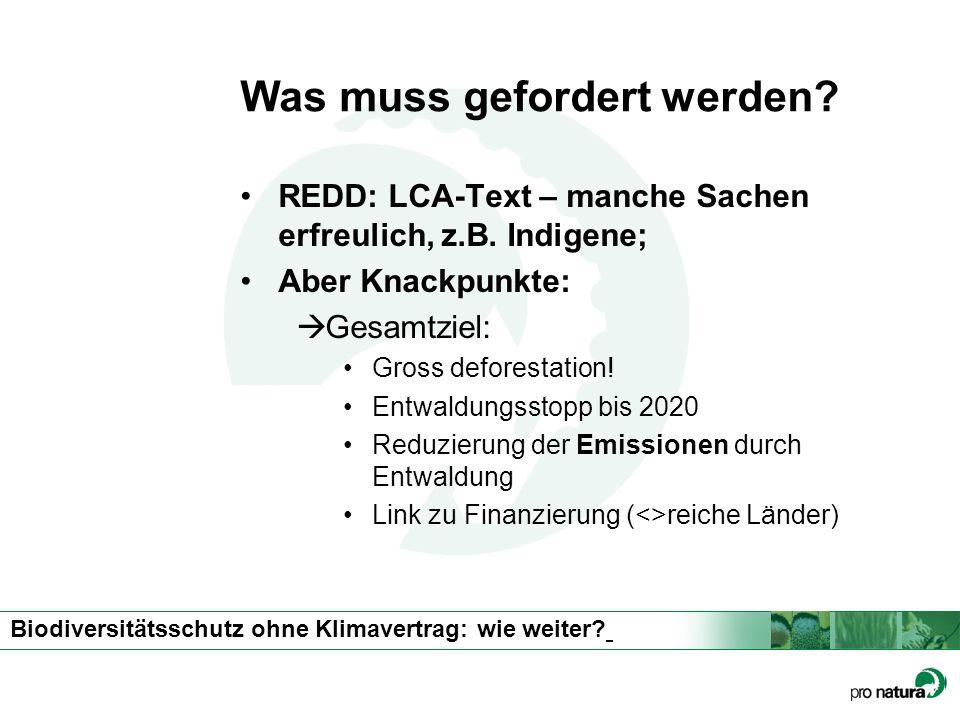 Biodiversitätsschutz ohne Klimavertrag: wie weiter? Was muss gefordert werden? REDD: LCA-Text – manche Sachen erfreulich, z.B. Indigene; Aber Knackpun