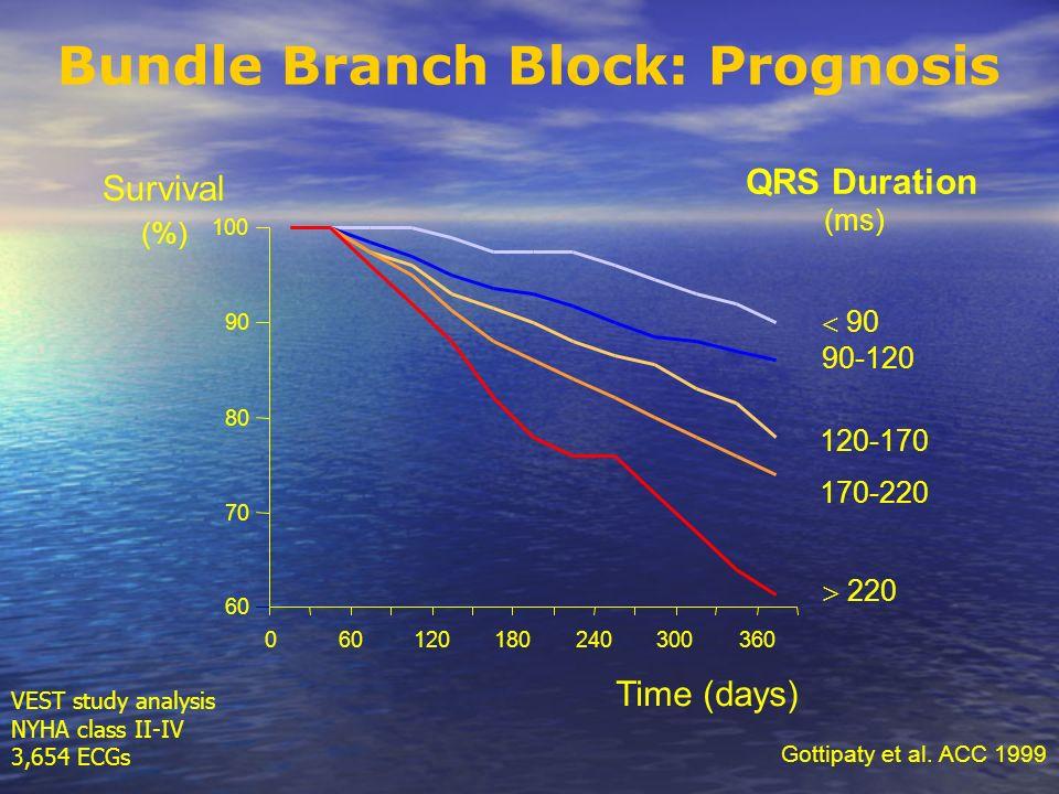 60 70 80 90 100 060120180240300360 Time (days) 90 120-170 170-220 220 Survival (%) 90-120 QRS Duration (ms) Bundle Branch Block: Prognosis Gottipaty e