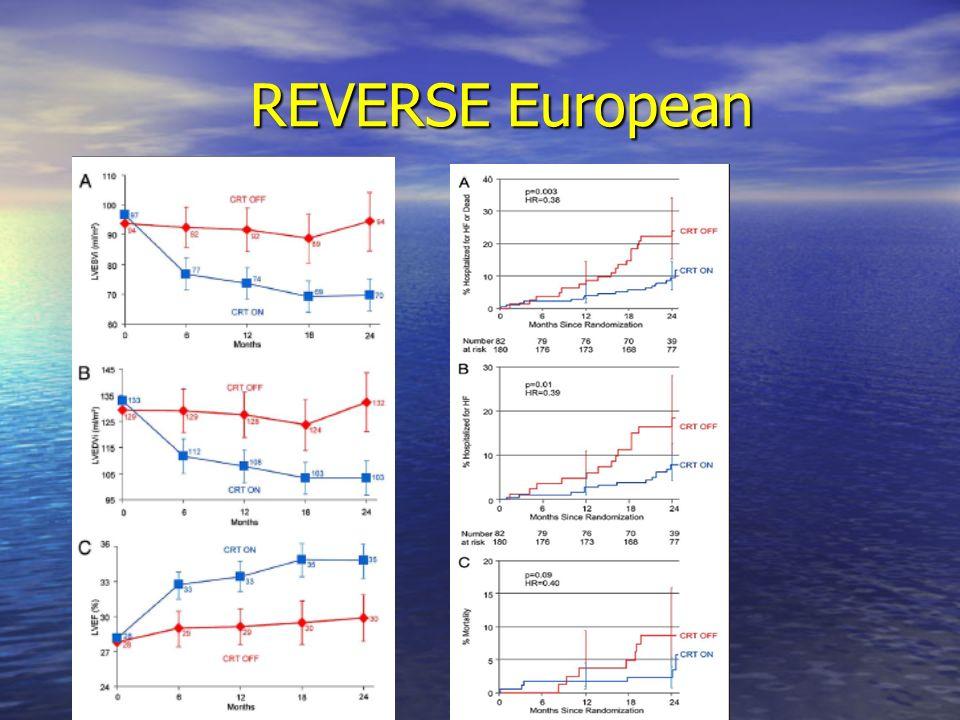 REVERSE European