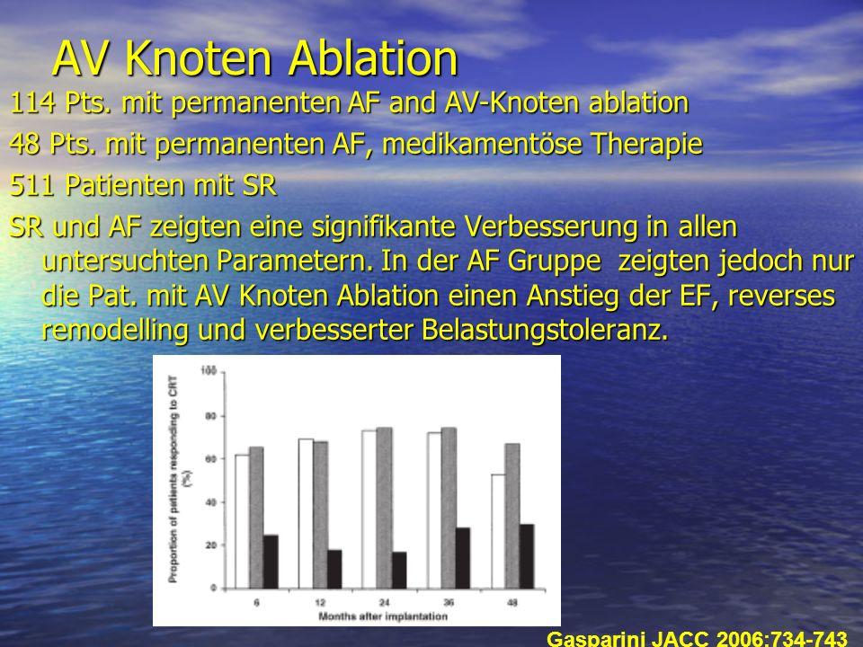AV Knoten Ablation 114 Pts. mit permanenten AF and AV-Knoten ablation 48 Pts. mit permanenten AF, medikamentöse Therapie 511 Patienten mit SR SR und A