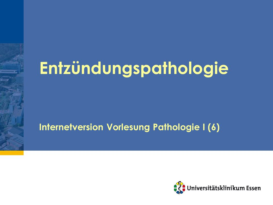 Entzündungspathologie Internetversion Vorlesung Pathologie I (6)