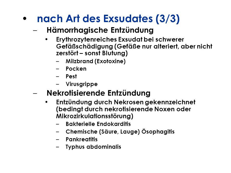 nach Art des Exsudates (3/3) – Hämorrhagische Entzündung Erythrozytenreiches Exsudat bei schwerer Gefäßschädigung (Gefäße nur alteriert, aber nicht ze