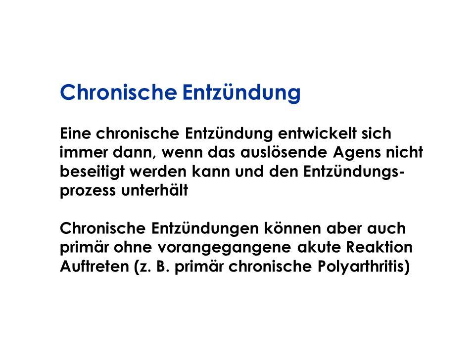 Eine chronische Entzündung entwickelt sich immer dann, wenn das auslösende Agens nicht beseitigt werden kann und den Entzündungs- prozess unterhält Ch
