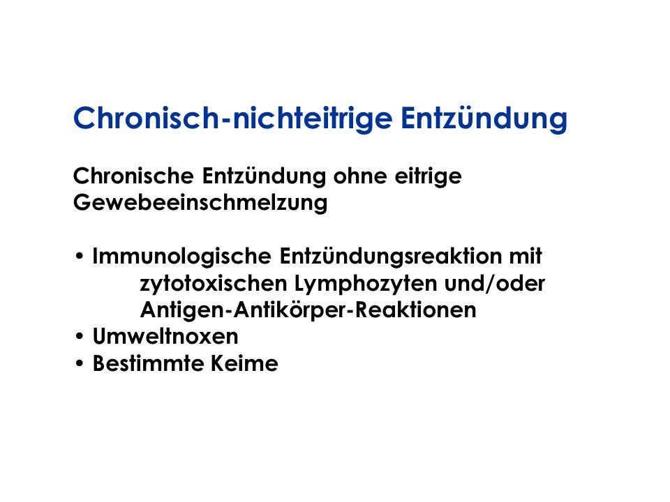 Chronisch-nichteitrige Entzündung Chronische Entzündung ohne eitrige Gewebeeinschmelzung Immunologische Entzündungsreaktion mit zytotoxischen Lymphozy