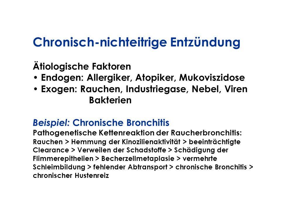Chronisch-nichteitrige Entzündung Ätiologische Faktoren Endogen: Allergiker, Atopiker, Mukoviszidose Exogen: Rauchen, Industriegase, Nebel, Viren Bakt