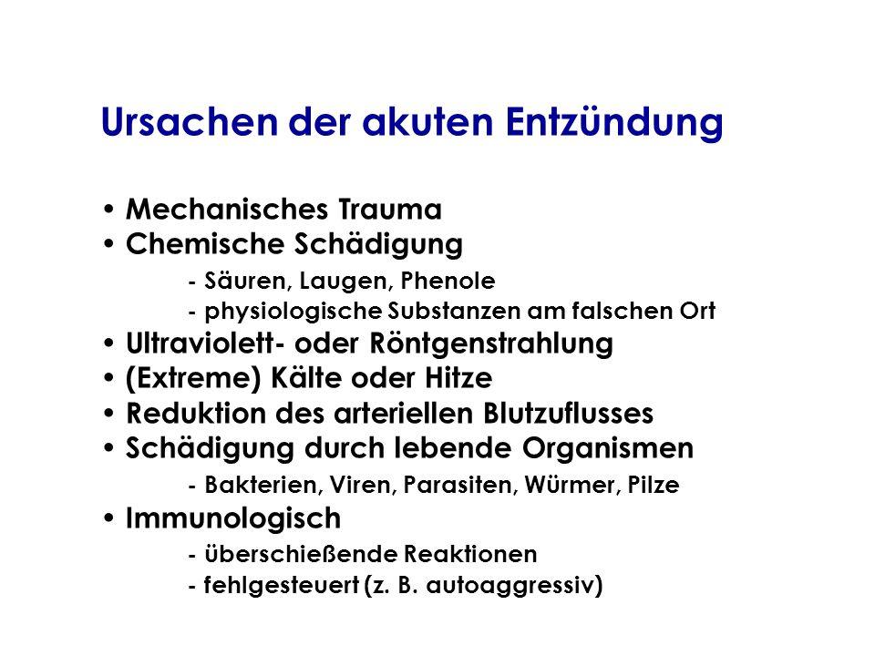 Ursachen der akuten Entzündung Mechanisches Trauma Chemische Schädigung - Säuren, Laugen, Phenole - physiologische Substanzen am falschen Ort Ultravio