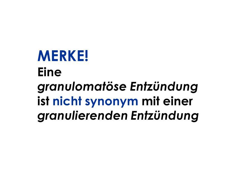 MERKE! Eine granulomatöse Entzündung ist nicht synonym mit einer granulierenden Entzündung