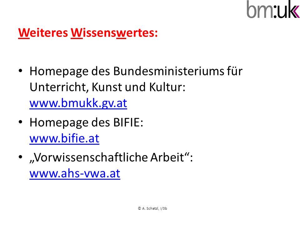 Weiteres Wissenswertes: Homepage des Bundesministeriums für Unterricht, Kunst und Kultur: www.bmukk.gv.at www.bmukk.gv.at Homepage des BIFIE: www.bifi