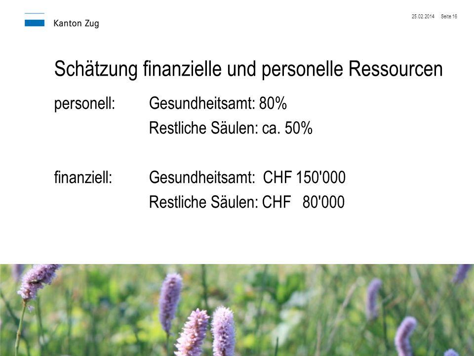 25.02.2014Seite 16 Schätzung finanzielle und personelle Ressourcen personell:Gesundheitsamt: 80% Restliche Säulen: ca. 50% finanziell:Gesundheitsamt: