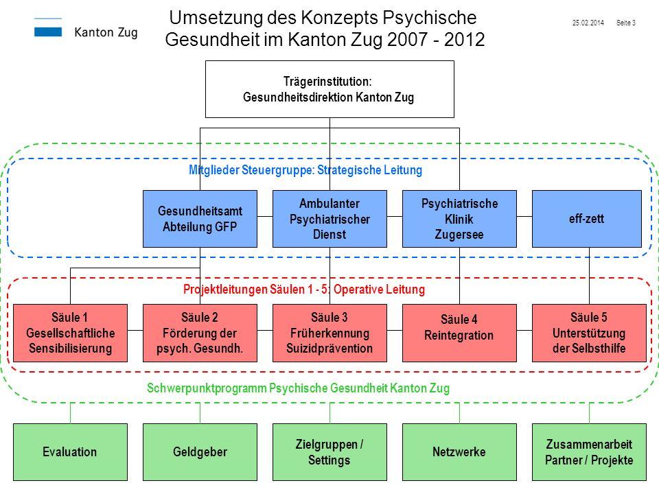 25.02.2014Seite 3 Trägerinstitution: Gesundheitsdirektion Kanton Zug Umsetzung des Konzepts Psychische Gesundheit im Kanton Zug 2007 - 2012 Gesundheit