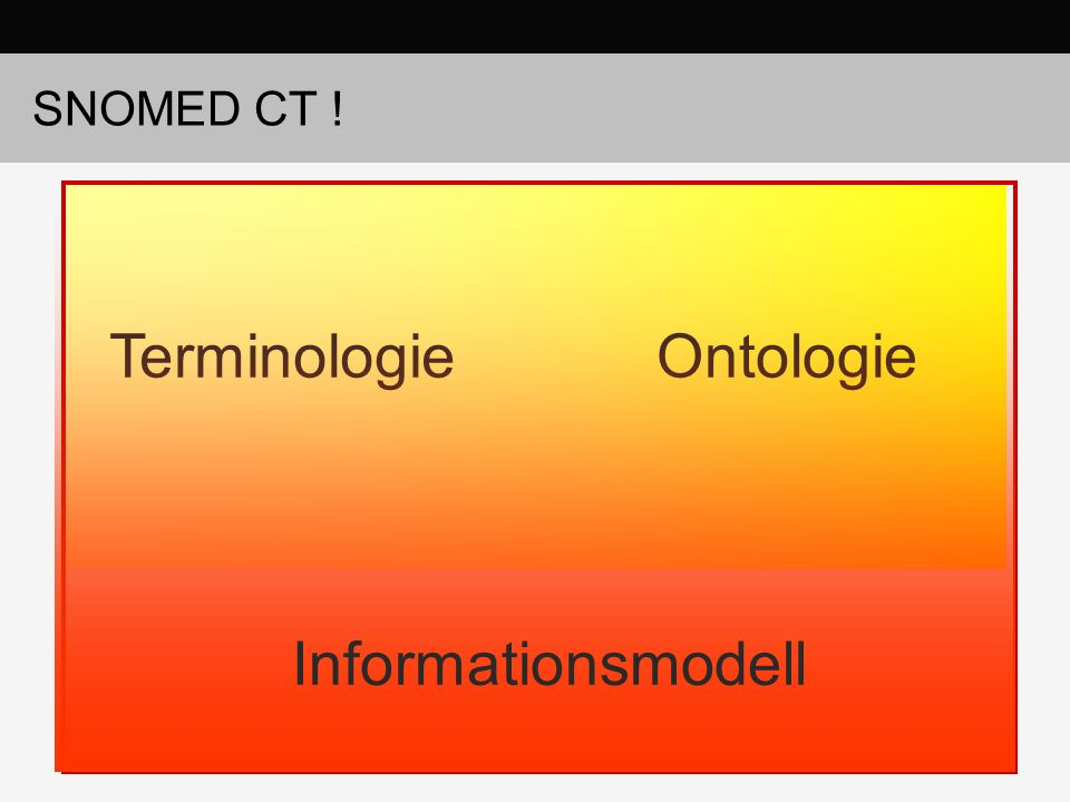 SNOMED CT ! TerminologieOntologie Informationsmodell