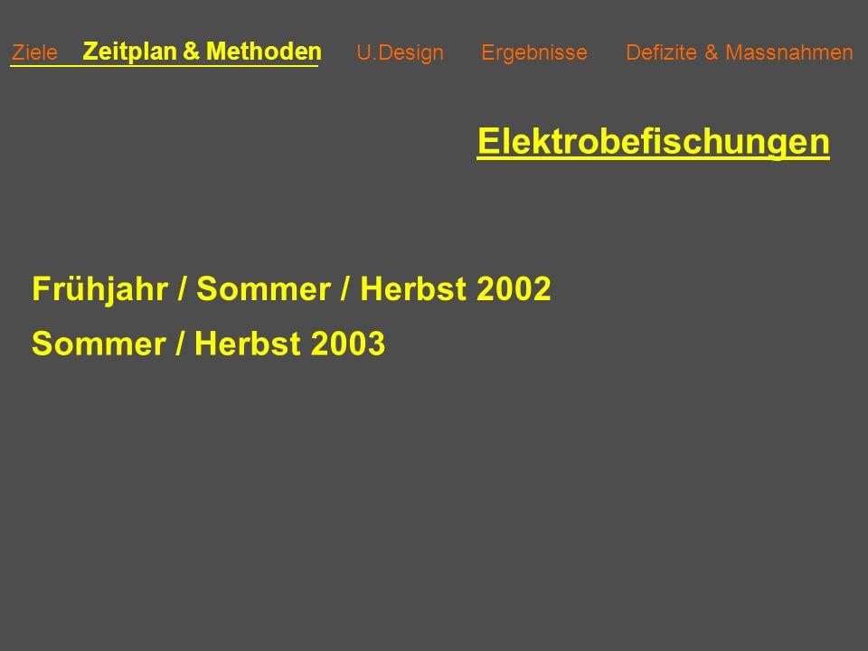 Ziele Zeitplan & Methoden U.Design Ergebnisse Defizite & Massnahmen Eiexpositionen im Necker ~20 cm Tiefe Winter 2002/2003 + Winter 2003/2004