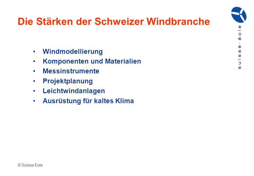 Windmodellierung Komponenten und Materialien Messinstrumente Projektplanung Leichtwindanlagen Ausrüstung für kaltes Klima Die Stärken der Schweizer Wi