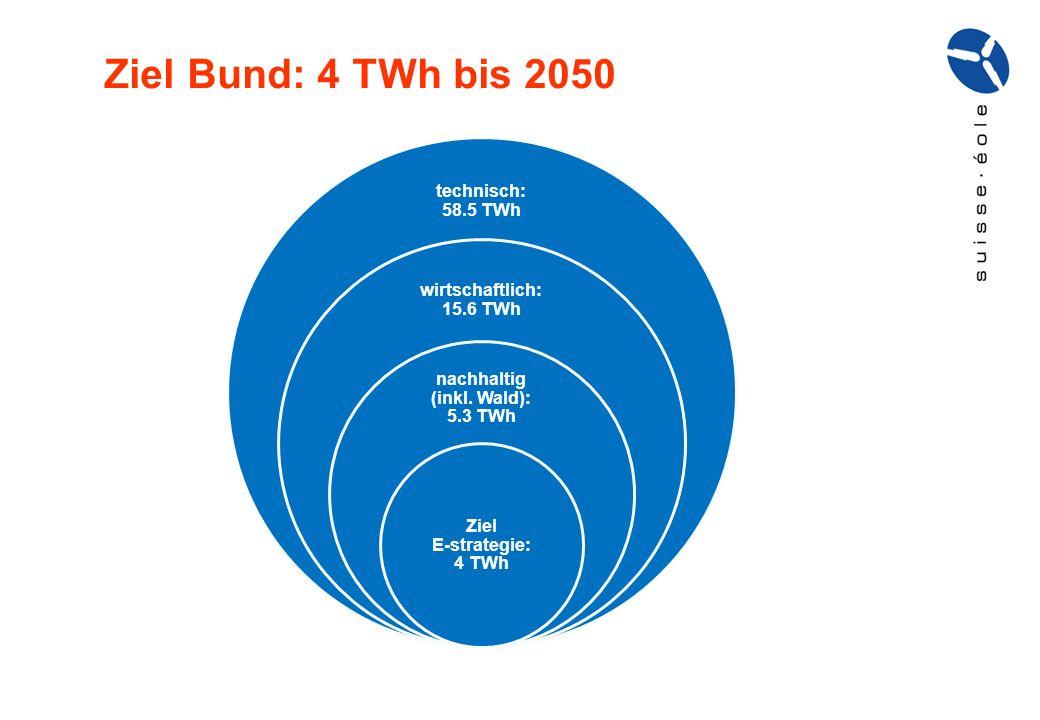 technisch: 58.5 TWh wirtschaftlich: 15.6 TWh nachhaltig (inkl. Wald): 5.3 TWh Ziel E-strategie: 4 TWh Ziel Bund: 4 TWh bis 2050