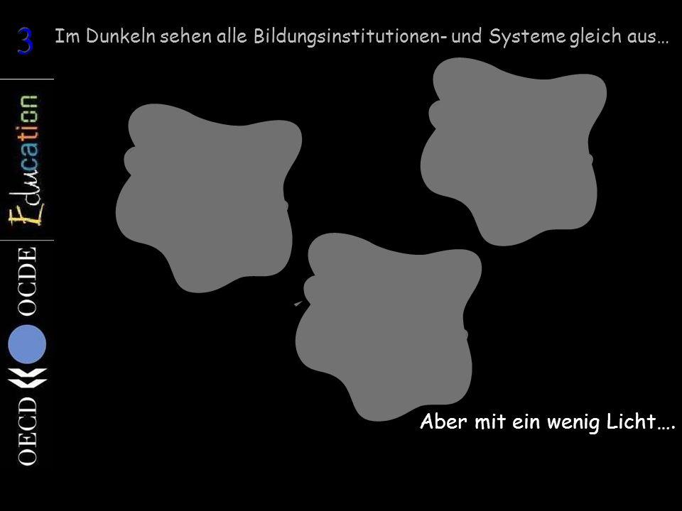 Im Dunkeln sehen alle Bildungsinstitutionen- und Systeme gleich aus… Aber mit ein wenig Licht….