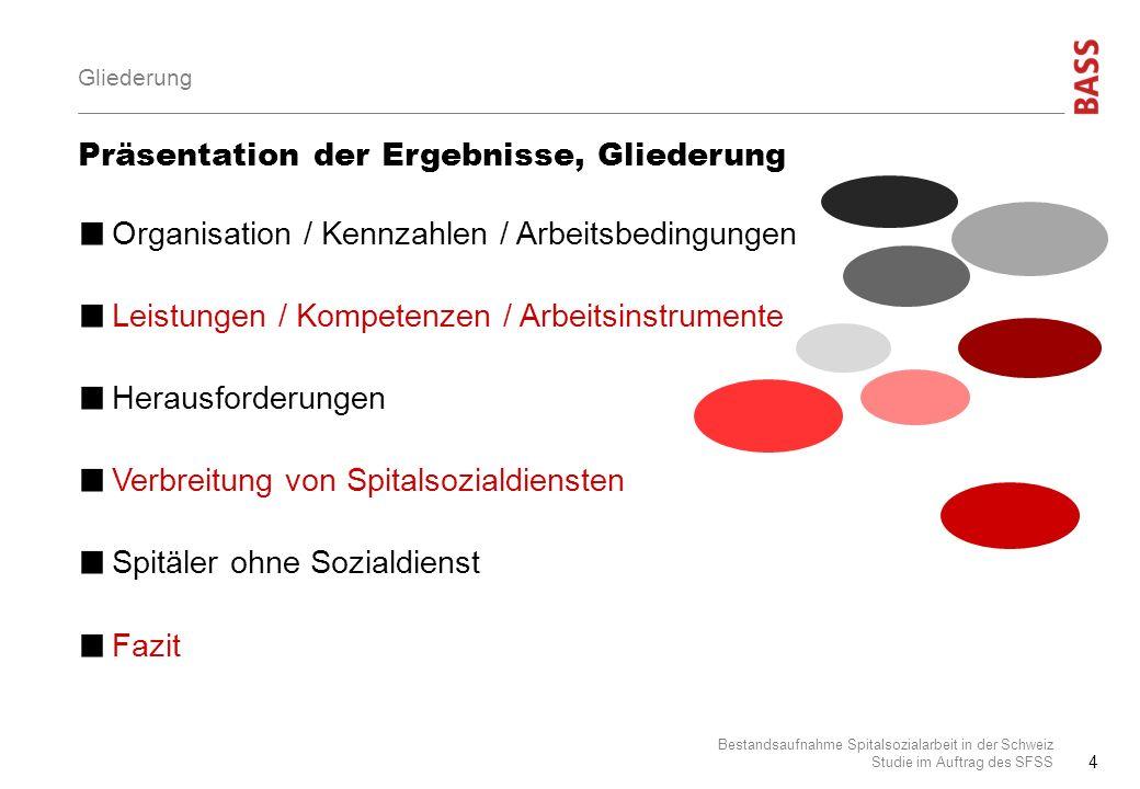 Präsentation der Ergebnisse, Gliederung Organisation / Kennzahlen / Arbeitsbedingungen Leistungen / Kompetenzen / Arbeitsinstrumente Herausforderungen