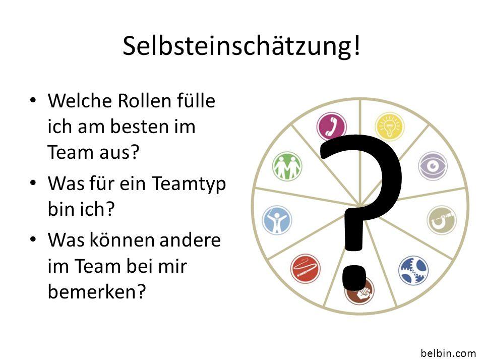 Selbsteinschätzung! Welche Rollen fülle ich am besten im Team aus? Was für ein Teamtyp bin ich? Was können andere im Team bei mir bemerken? ? belbin.c
