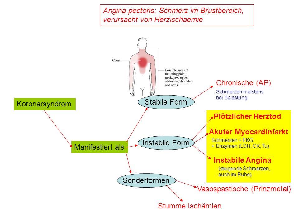 GPIIb/IIIa-Inhibitoren AbciximabEptifibatidTirofiban AntikörperHeptapeptidTyrosin-Analog Thrombozyten- gebundene t 1/2 Stunden-TageSekunden Plasma-t 1/2 Minuten2,5 h1,8 h Drug-Receptor-Ratio1,5-2,0250-2500>250 Dosisanpass.