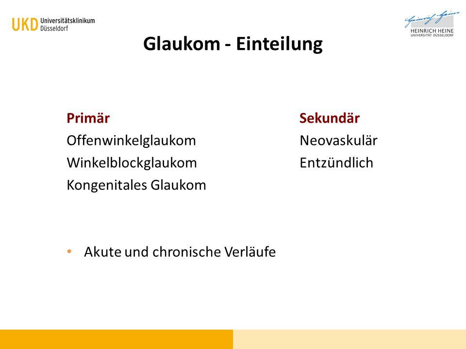 WBG (Winkelblockglaukom)