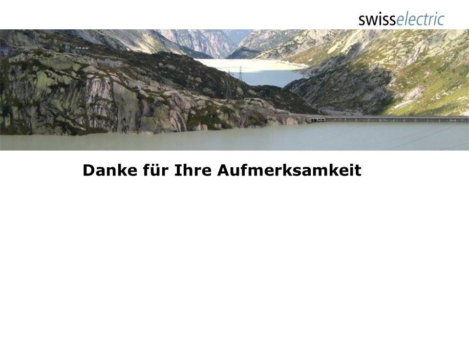 Haltung swisselectric – Stossrichtung 9:Der Ausbau der Wasserkraft im Allgemeinen und der Pumpspeicher im Besonderen findet in den Massnahmen kaum Nie