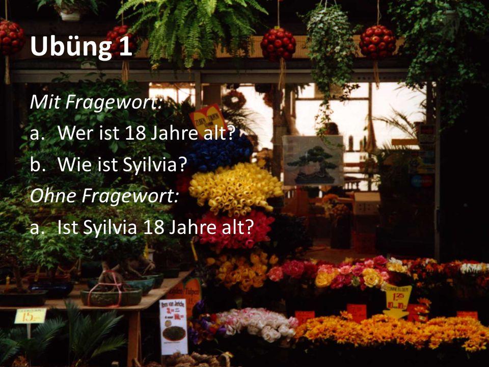 Ubüng 1 Mit Fragewort: a.Wer ist 18 Jahre alt.b.Wie ist Syilvia.