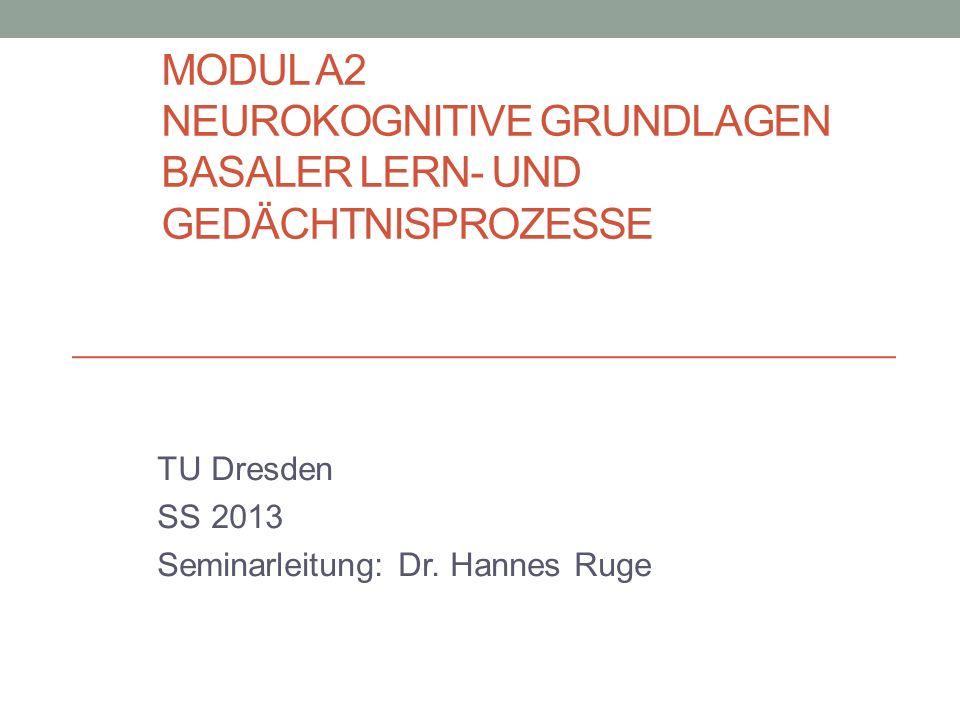 MODUL A2 NEUROKOGNITIVE GRUNDLAGEN BASALER LERN- UND GEDÄCHTNISPROZESSE TU Dresden SS 2013 Seminarleitung: Dr. Hannes Ruge