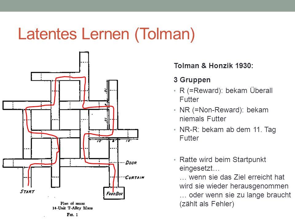 Latentes Lernen (Tolman) 3 Gruppen R (=Reward): bekam Überall Futter NR (=Non-Reward): bekam niemals Futter NR-R: bekam ab dem 11. Tag Futter Ratte wi