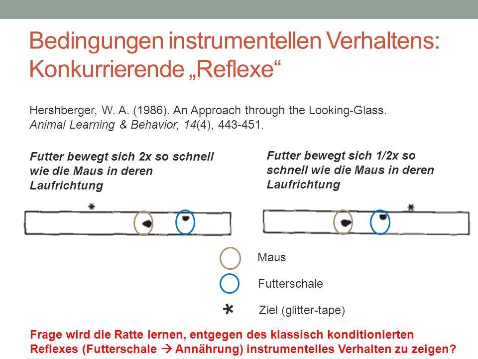 Futterschale Maus * Ziel (glitter-tape) Bedingungen instrumentellen Verhaltens: Konkurrierende Reflexe Futter bewegt sich 2x so schnell wie die Maus i