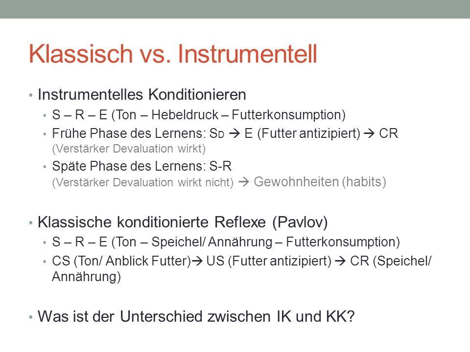 Klassisch vs. Instrumentell Instrumentelles Konditionieren S – R – E (Ton – Hebeldruck – Futterkonsumption) Frühe Phase des Lernens: S D E (Futter ant