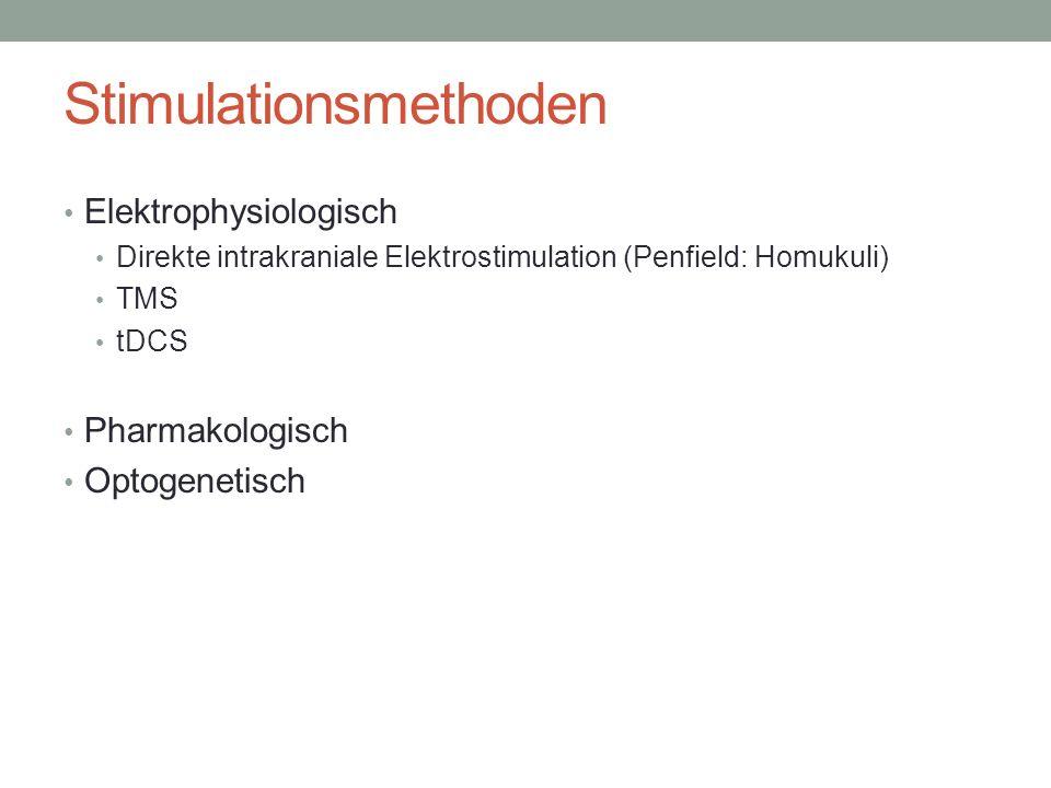 Stimulationsmethoden Elektrophysiologisch Direkte intrakraniale Elektrostimulation (Penfield: Homukuli) TMS tDCS Pharmakologisch Optogenetisch