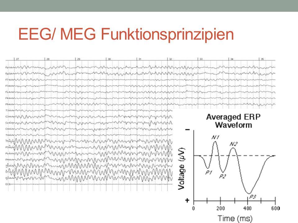 EEG/ MEG Funktionsprinzipien