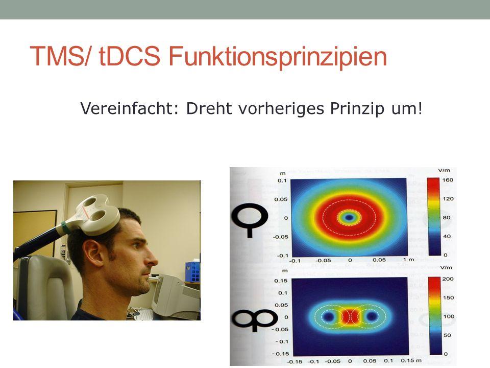 Vereinfacht: Dreht vorheriges Prinzip um! TMS/ tDCS Funktionsprinzipien