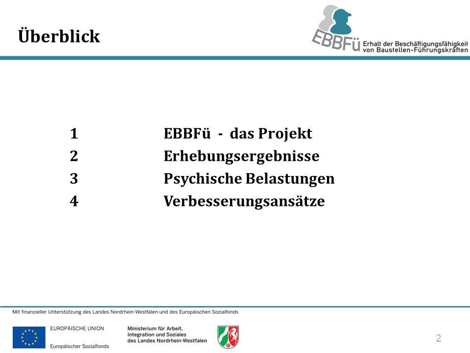 2/33 Überblick 1 EBBFü - das Projekt 2Erhebungsergebnisse 3Psychische Belastungen 4Verbesserungsansätze 2