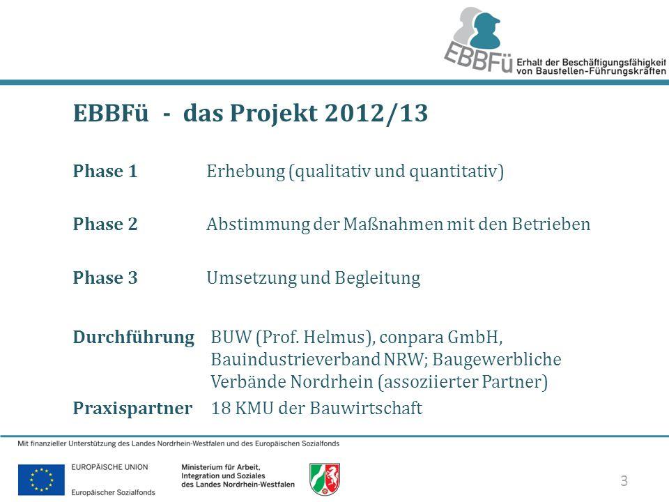 3/33 EBBFü - das Projekt 2012/13 Phase 1Erhebung (qualitativ und quantitativ) Phase 2Abstimmung der Maßnahmen mit den Betrieben Phase 3Umsetzung und B