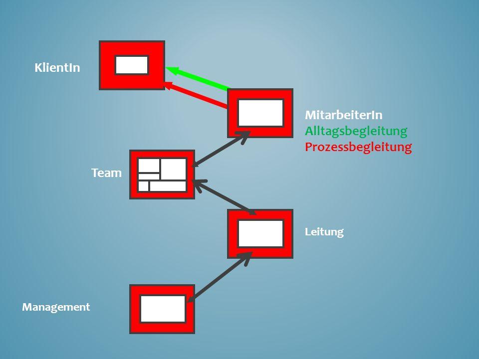 KlientIn MitarbeiterIn Alltagsbegleitung Prozessbegleitung Team Leitung Management