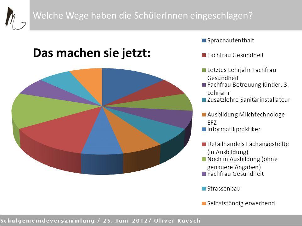 Schulgemeindeversammlung / 25. Juni 2012/ Oliver Rüesch Welche Wege haben die SchülerInnen eingeschlagen? Das machen sie jetzt: