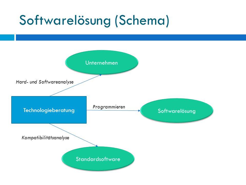 Softwarelösung (Schema) Technologieberatung Hard- und Softwareanalyse Programmieren Kompatibilitätsanalyse
