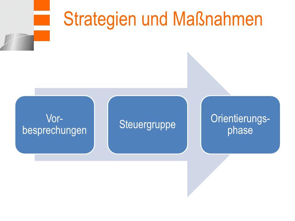 Strategien und Maßnahmen Vor- besprechungen Steuergruppe Orientierungs- phase