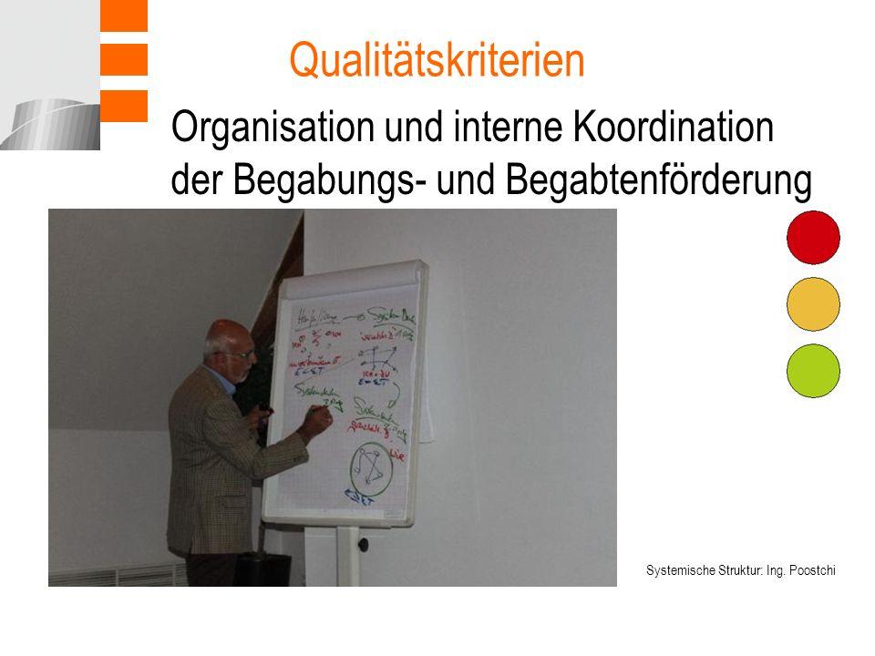 Organisation und interne Koordination der Begabungs- und Begabtenförderung Qualitätskriterien Systemische Struktur: Ing.