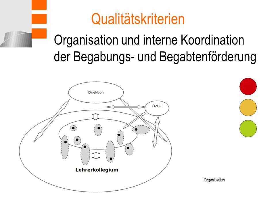 Organisation und interne Koordination der Begabungs- und Begabtenförderung Qualitätskriterien Organisation